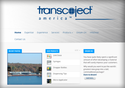 Business to Business Websites – Transcoject